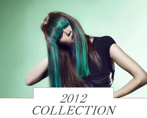 2012 Hair Extensions  in Nottingham Collection Photo Gallery